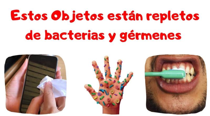 Estos Objetos contienen millones de bacterias